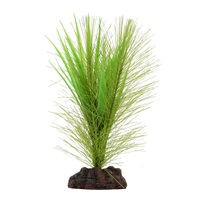 Fluval Aqualife Plant Scapes Green Parrot's Feather/ Vallisneria Plant Mix - 12.5 cm (5 in)