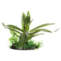 "Fluval Decorative Plant - Giant Sagittaria - Small - 10 cm (4"") with base"