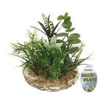 Marina Deco Plant Ornament - Medium - 8.9 cm (3.5 in)