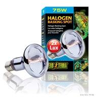 Exo Terra Halogen Basking Spot - 75 W