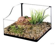 Exo Terra Turtle Terrarium Small/ Aquatic Habitat - 45 x 45 x 20/30 cm (18 x 18 x 8/12)