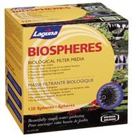 Laguna Biospheres - 120 Spheres