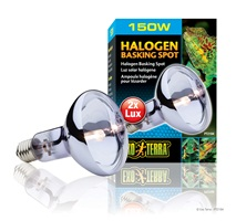 Exo Terra Halogen Basking Spot - 150 W