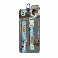 Arista Collar & Leash Set - Large - Aqua