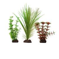 Fluval Aqualife Plant Scapes Red Limnophila 3 Plant Set - 10-20 cm (4-8 in)