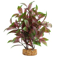Fluval Aqualife Plant Scapes Broad Leaf Red Ludwigia - 25.5 cm (10 in)