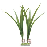 "Fluval Decorative Plants - Acorus - 36 cm (14.5"") with base"