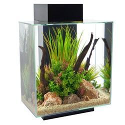 Fluval Edge Aquarium Set - Black - 46 L (12 US gal)