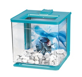 Marina Betta EZ Care Aquarium Kit - Blue - 2.5 L (0.7 US Gal)