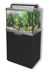 "Fluval ""Studio 600"" Aquarium set, Black, 125L (33 USgal.)"
