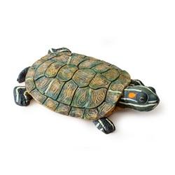 Îles Exo Terra pour tortues, tortue