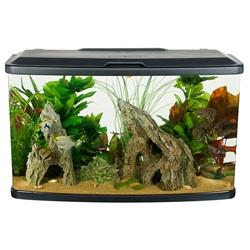 Fluval Vista Aquarium