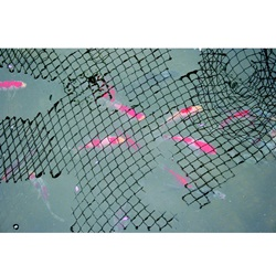 Laguna Protective Pond Netting - 4.5 x 3.5 m (15 x 12 ft) - Black