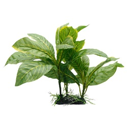 "Fluval Decorative Plants - Yellow Stripe Spathiphyllum - 22 cm (9"") with base"