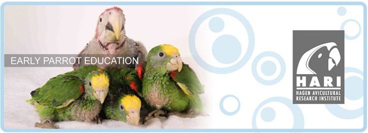 HARI Early Parrot Education