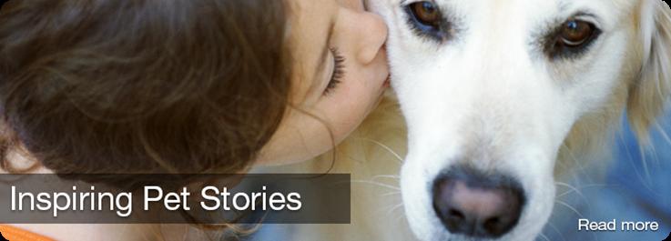 Inspiring Pet Stories