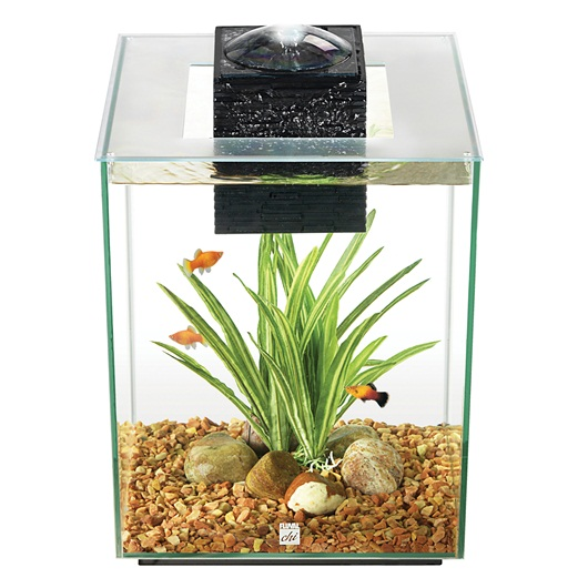 Hagen fluval 19l chi fish tank aquarium with led light for Fluval fish tank