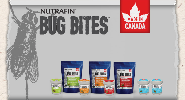 Nutrafin Bug Bites: Made in Canada
