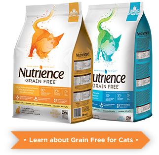 Learn more about Nutrience Grain Free for cats