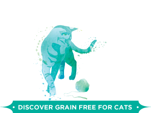 Discover Grain Free for Cats
