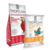 Tropican bird food