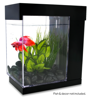 Marina Betta STYLE Aquarium: Fish & decor not included